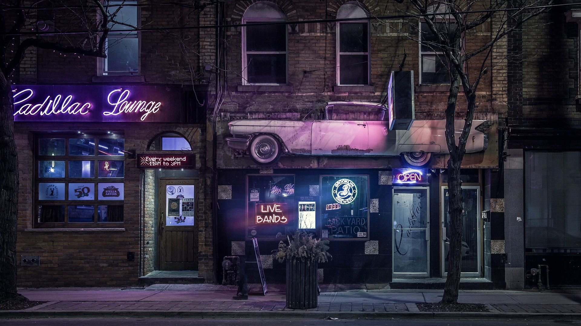 bar storefront with neon lights